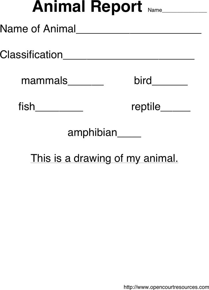Animal Report Template 2