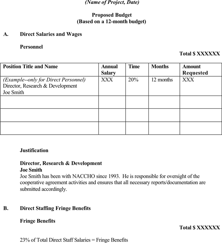 Budget Proposal Template 3