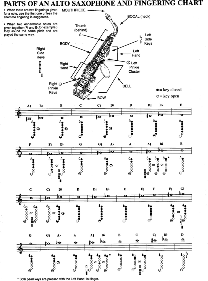 Parts of An Alto Saxophone And Fingering Chart