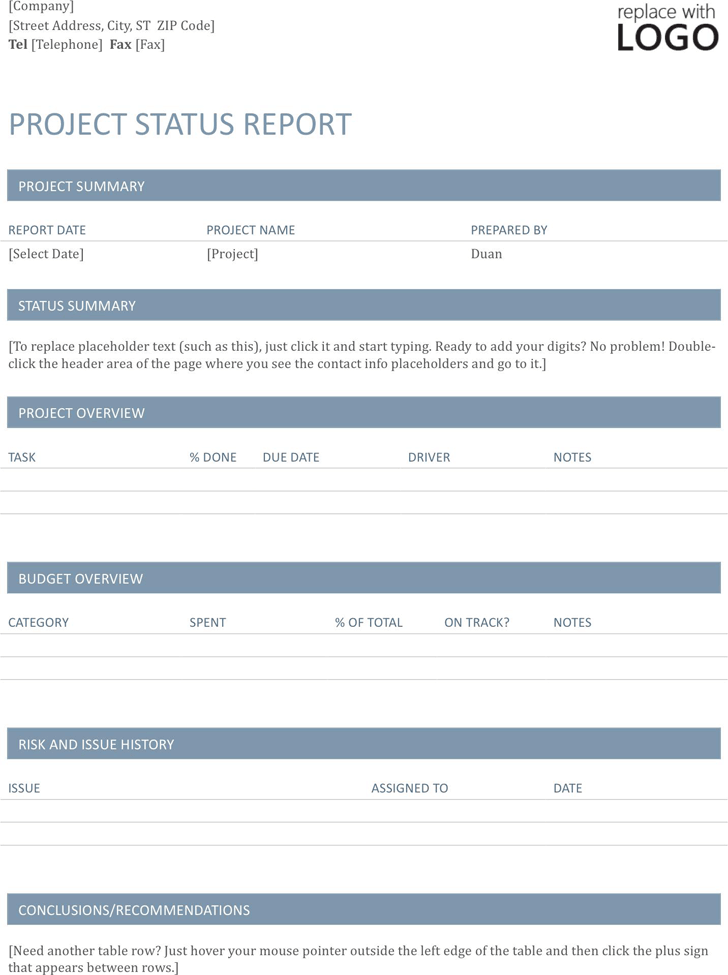 Project Status Report Template 1